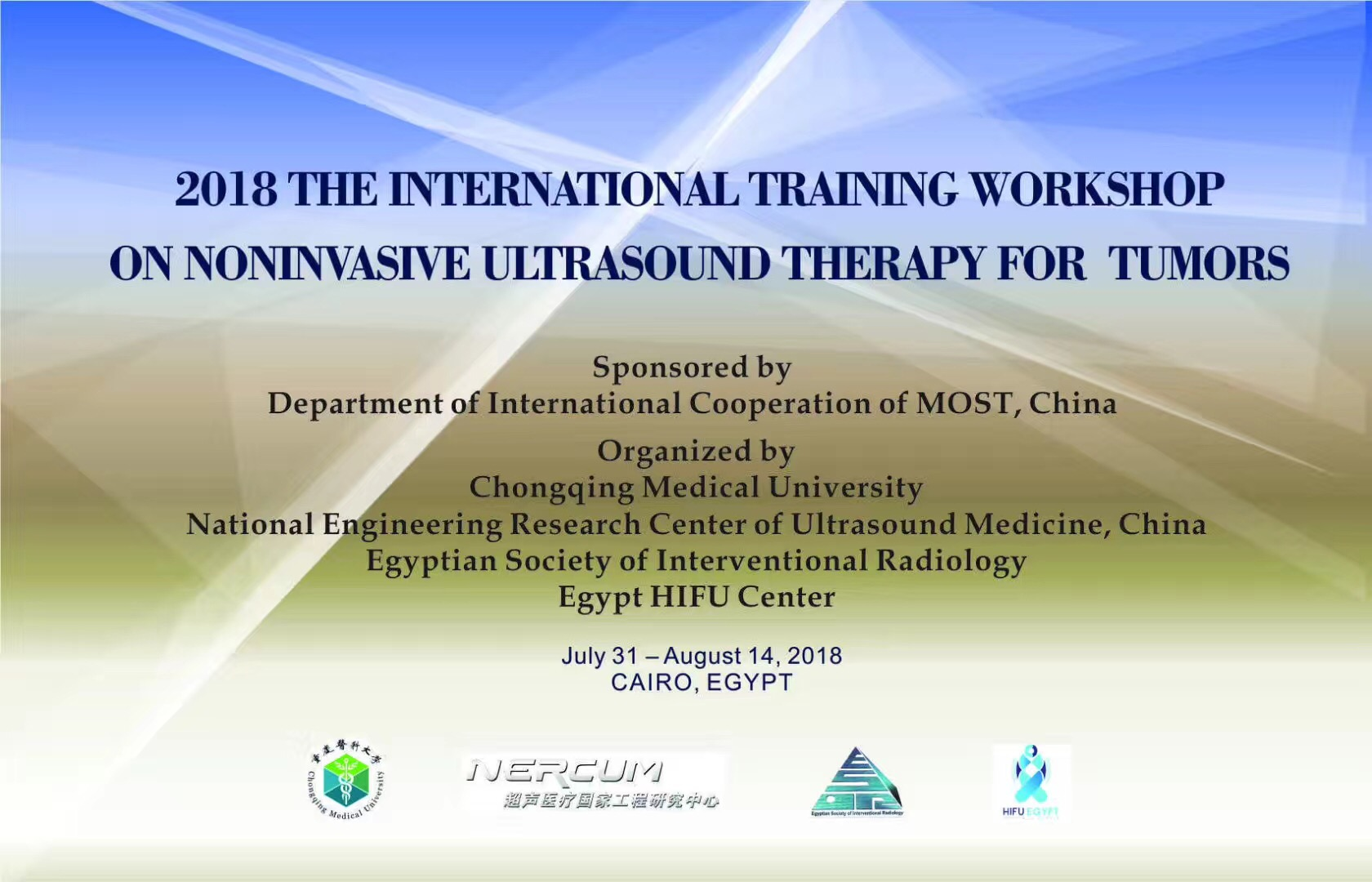 Report from the 2018 International Training Workshop on Noninvasive Ultrasound Therapy for Tumors